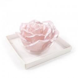 MERCURY Candela rosa perlata 12cm in confezione