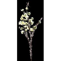 XONE Ramo Cherry blossom h75cm