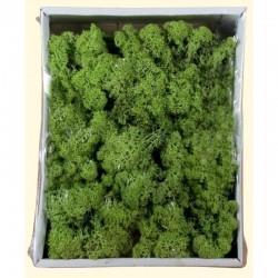ROSSI ROSA Muschio lichene verde sc. 400 gr.
