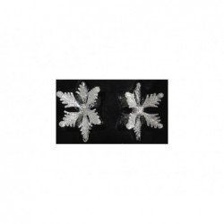 XONE Coppia fiocchi 3d in vetro neve bianco 8x8 cm