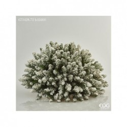 ENZO DE GASPERI Cespuglio pino h42xø60cm green white