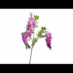 XONE Glicine h100cm color violetto