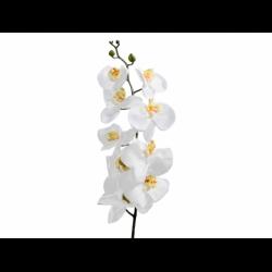 XONE Orchidea h. 102 cm colore bianco