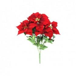 XONE Stella di natale 5 steli colore rosso