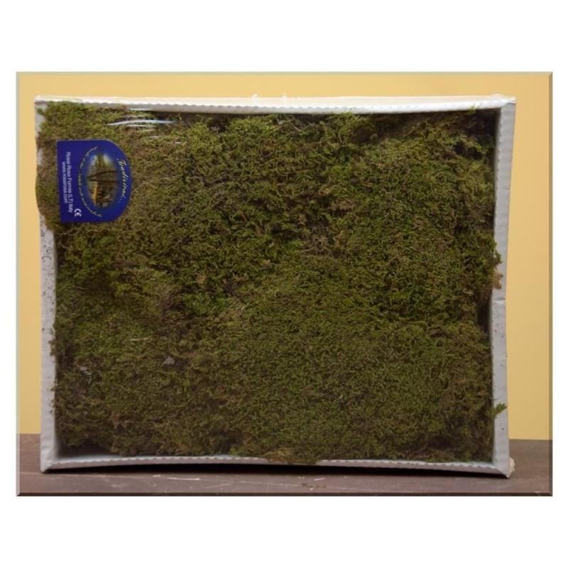 ROSSI ROSA Muschio naturale a tappeto 350 gr. per presepe