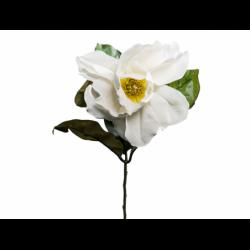 XONE Magnolia spray colore crema h70cm