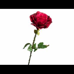 XONE Rosa con spine h60cm
