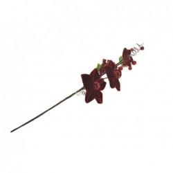 PARTENOPE Tralcio bouquet bacche velluto rosso