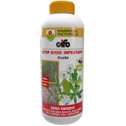 CIFO Aceto 1 litro