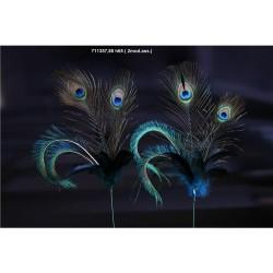 ENZO DE GASPERI Piume pavone ramo h. 65cm blu 2ass.